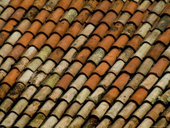 Close-Up of Terra Cotta Roof Tiles, Asolo, Italy Photographic Print by Todd  Gipstein | Art com