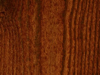 Close-Up of Vertical Woodgrain Pattern--Photographic Print
