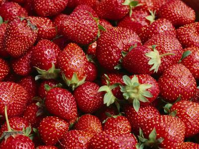 Close View of Freshly Picked Strawberries-Brian Gordon Green-Photographic Print
