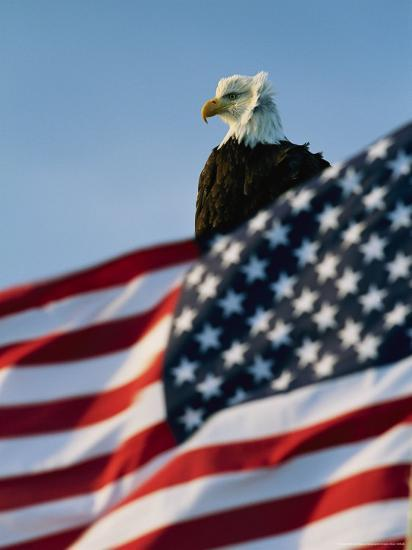 Close View of the American Flag's Stars and Stripes Waving in the Wind-Norbert Rosing-Photographic Print