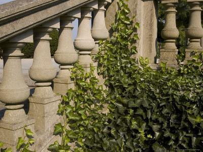 Close View of the Ivy Covered Balustrade of a Staircase-Todd Gipstein-Photographic Print