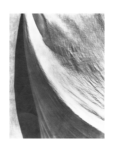 Cloth, Mexico, 1924-Tina Modotti-Photographic Print