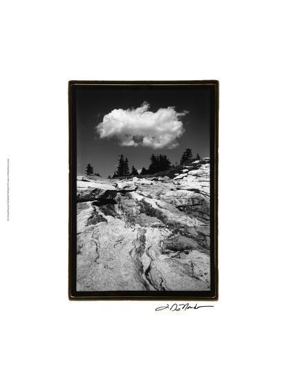 Cloud Dream-Laura Denardo-Art Print