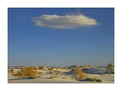 Cloud over White Sands National Monument, Chihuahuan Desert, New Mexico-Tim Fitzharris-Art Print