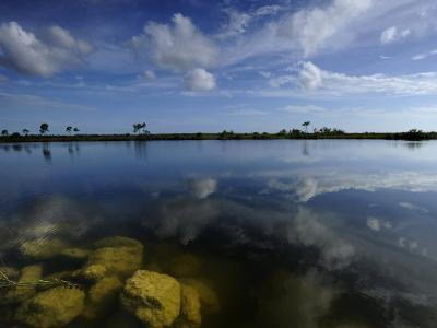 Cloud Reflections in Still Water in Everglades National Park-Raul Touzon-Photographic Print