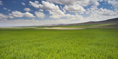 Clouds and Fields Close Konya, Anatolia, Turkey-Rainer Mirau-Photographic Print