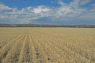 Clouds Billow over a Harvested Wheat Field Near Bozeman, Montana-Gordon Wiltsie-Photographic Print