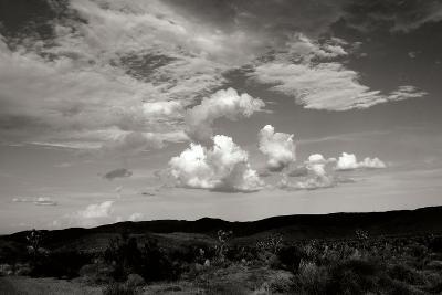 Clouds in Joshua Tree II-Erin Berzel-Photographic Print