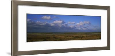 Clouds over a Landscape, Paynes Prairie Preserve State Park, Gainesville, Florida, USA