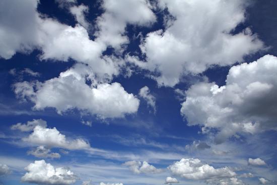 Clouds over Waikato, North Island, New Zealand-David Wall-Photographic Print