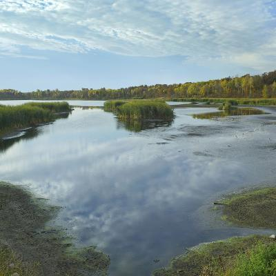 Clouds Reflect in the Pembina River Backwaters, Manitoba-Tim Fitzharris-Photographic Print