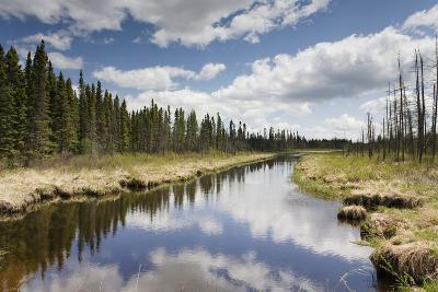 Clouds Reflected in a Tranquil River Lined with Trees; Thunder Bay, Ontario, Canada-Design Pics Inc-Photographic Print