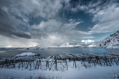 Cloudy Day in Norway-Philippe Sainte-Laudy-Photographic Print
