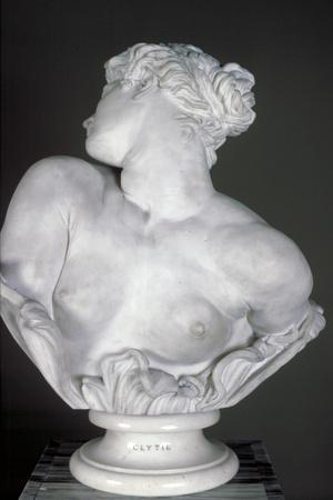https://imgc.artprintimages.com/img/print/clytie-1878_u-l-q10lskt0.jpg?p=0