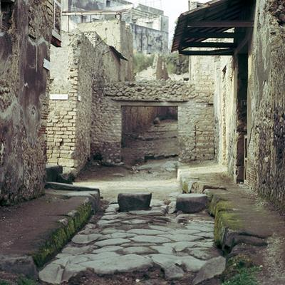A Street and Houses, Pompeii, Italy by CM Dixon