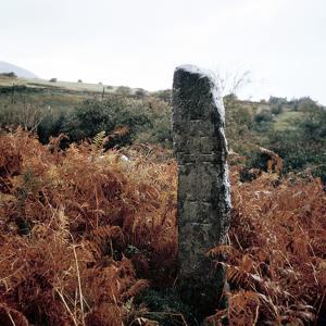 Cross-Inscribed Ogham Stone, Dromkeare, Co.Kerry, Ireland by CM Dixon