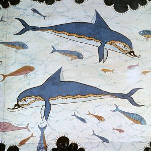 Minoan Wall-Painting of Dolphins by CM Dixon
