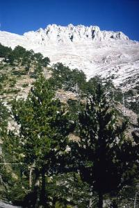Mt Olympus, Greece, summit from the South, c20th century by CM Dixon