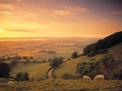 Coaley Peak, Dursley, Cotswolds, England-Peter Adams-Photographic Print