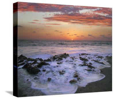 Coast at sunset, Blowing Rocks Beach, Jupiter Island, Florida-Tim Fitzharris-Stretched Canvas Print