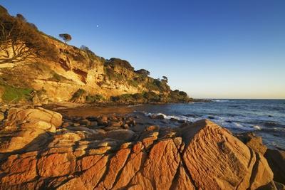 Coast Landscape at Bunker Bay-Frank Krahmer-Photographic Print