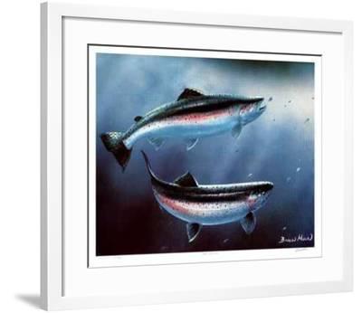 Coast Rainbows-Bruce Muir-Framed Limited Edition