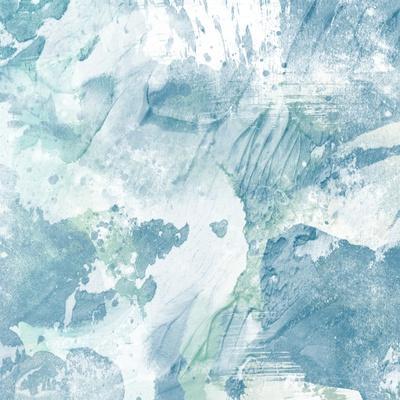https://imgc.artprintimages.com/img/print/coastal-adversity-1_u-l-q1bqqlu0.jpg?p=0
