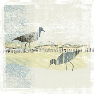 Coastal Birds I-Ken Hurd-Art Print