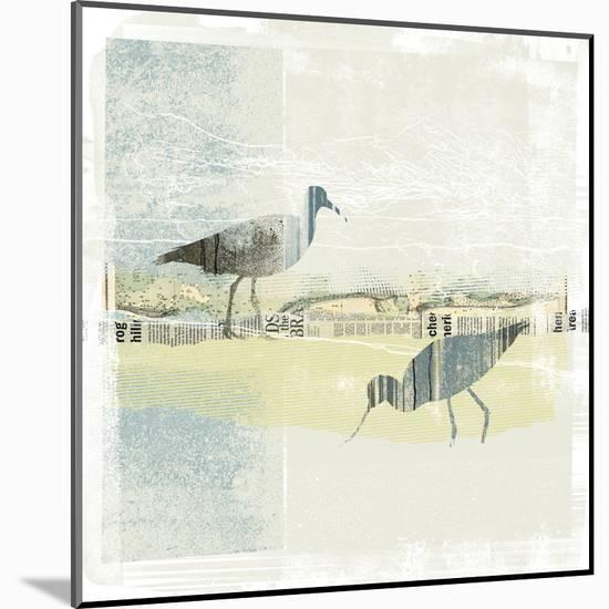 Coastal Birds I-Ken Hurd-Mounted Print