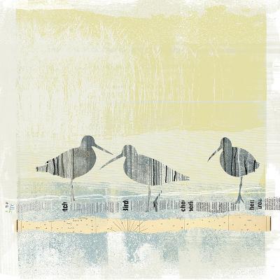 Coastal Birds II-Ken Hurd-Art Print