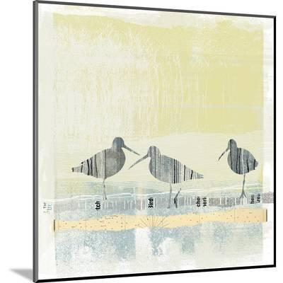Coastal Birds II-Ken Hurd-Mounted Print