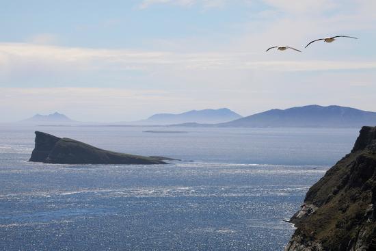 Coastal Cliffs, Falkland Islands-Charlotte Main-Photographic Print