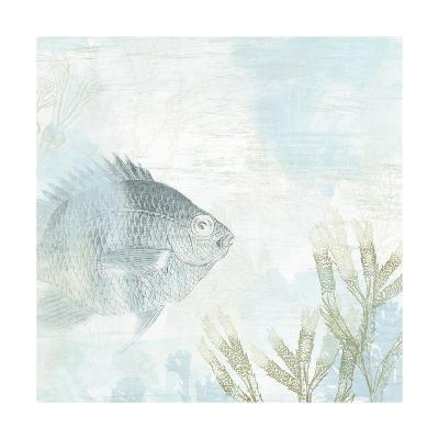 Coastal Fresco I-June Vess-Art Print