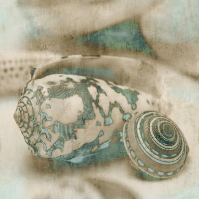 Coastal Gems I-John Seba-Art Print