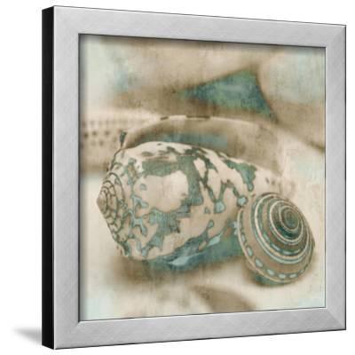 Coastal Gems I-John Seba-Framed Giclee Print