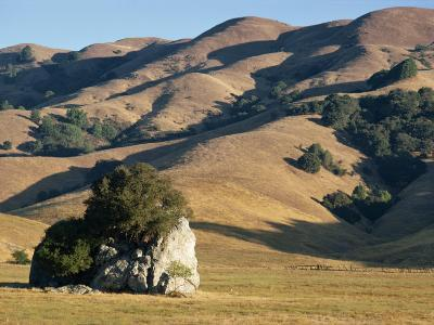 Coastal Hills of Marin County at Dusk, California, United States of America, North America-Rawlings Walter-Photographic Print