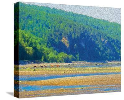 Coastal Horses-SM Design-Stretched Canvas Print