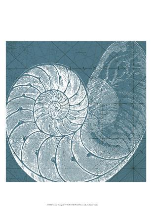 Coastal Menagerie VI--Art Print