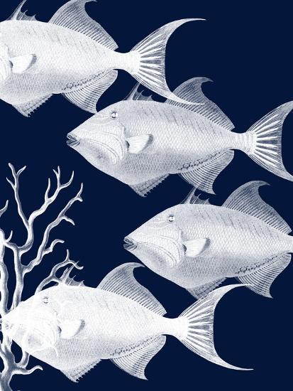 Coastal Orchestra-Sheldon Lewis-Art Print