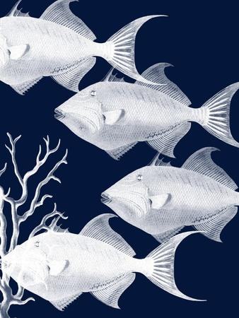 https://imgc.artprintimages.com/img/print/coastal-orchestra_u-l-q1g7xx40.jpg?p=0