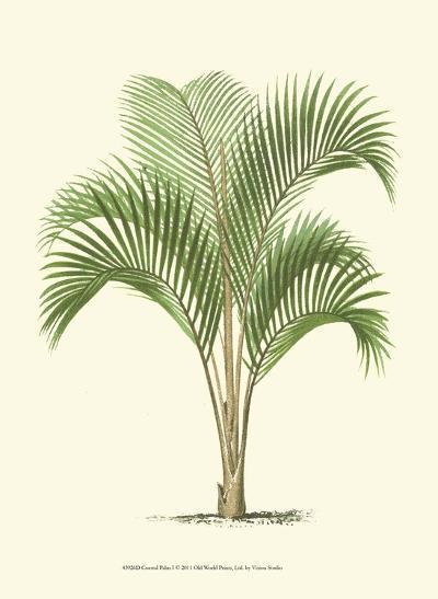 Coastal Palm I--Art Print