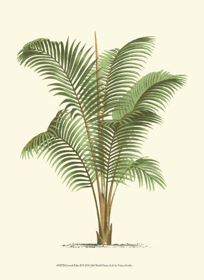 Coastal Palm II--Art Print