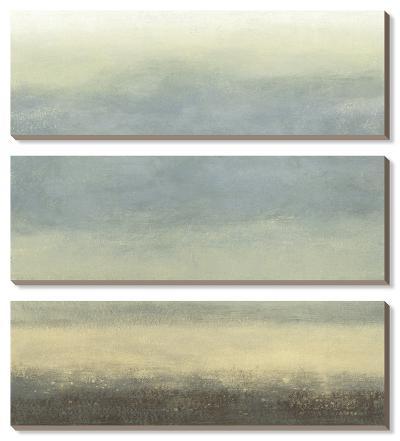 Coastal Rain I-Norman Wyatt Jr^-Canvas Art Set