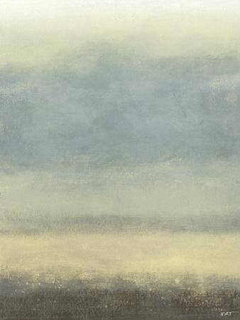 https://imgc.artprintimages.com/img/print/coastal-rain-i_u-l-p8lb0k0.jpg?p=0