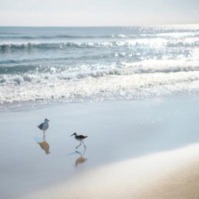 https://imgc.artprintimages.com/img/print/coastal-retreat-shores_u-l-f9juhp0.jpg?p=0