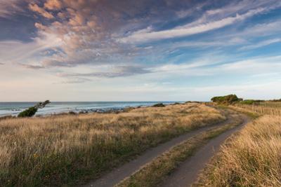 Coastal road at dusk, Cape Egmont, Pungarehu, New Plymouth, Taranaki, North Island, New Zealand