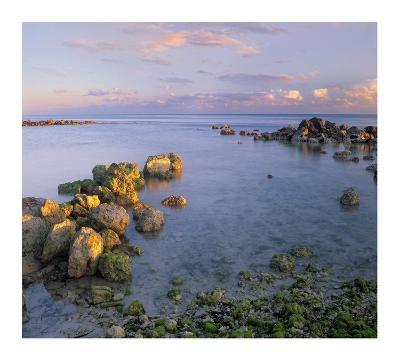 Coastal rocks, Bahia Honda Key, Florida-Tim Fitzharris-Art Print