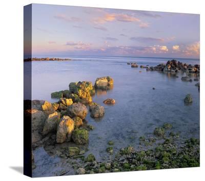 Coastal rocks, Bahia Honda Key, Florida-Tim Fitzharris-Stretched Canvas Print