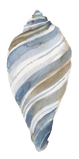 Coastal Seashells - Tulip-Sandra Jacobs-Art Print