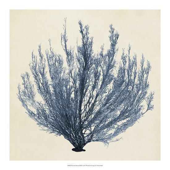 Coastal Seaweed III-Vision Studio-Giclee Print